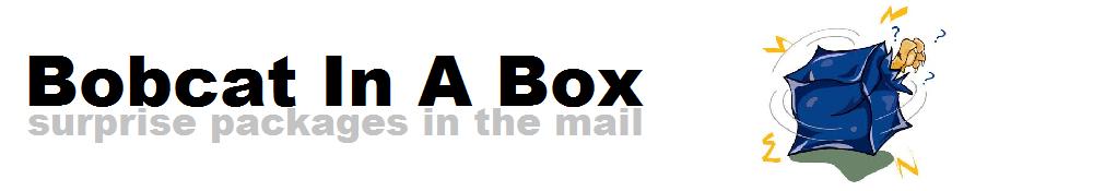 Bobcat In A Box